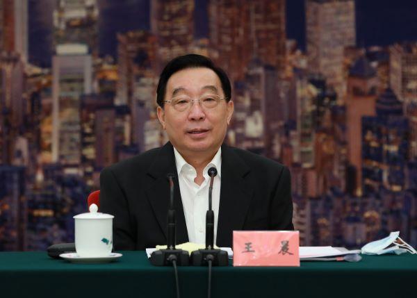 王晨 香港国安法1.jpg
